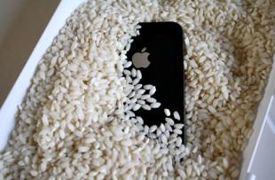 iphonearroz01